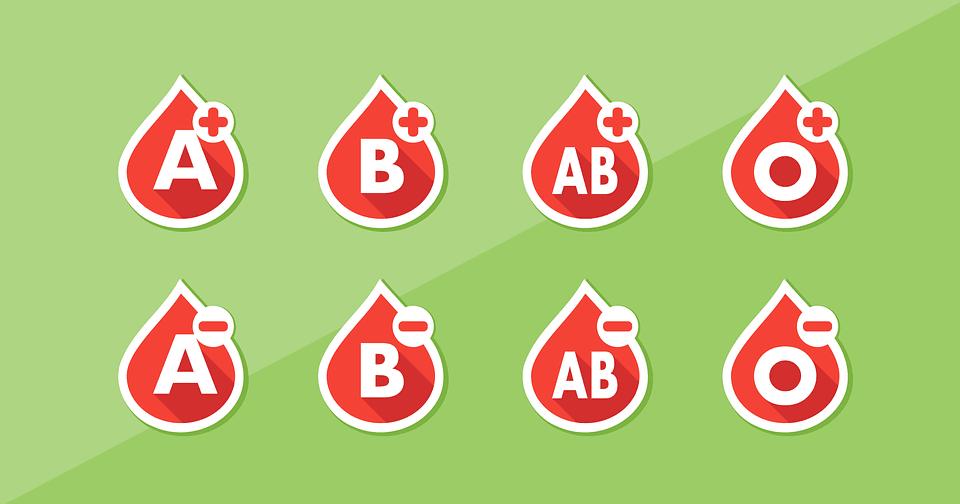 Dieta para el tipo de sangre: para mantenerse en forma y adelgazar de forma saludable