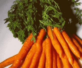 Dieta rápida de zanahoria