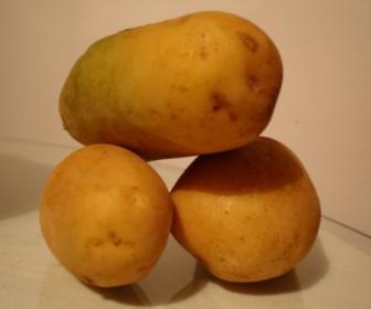 Dieta adelgazante de patata