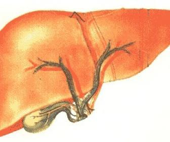 Hepatitis viral de la hepatitis c