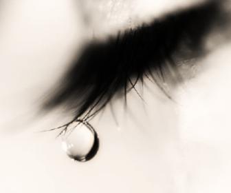 Ojos llorosos: Excesivo lagrimeo de los ojos.