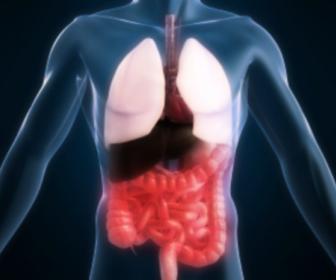 Causas de la enfermedad de Crohn