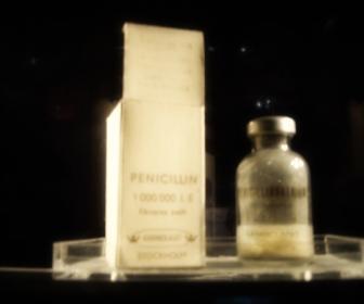 Penicilina: las penicilinas