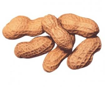 Vitamina B5 o ácido pantoténico
